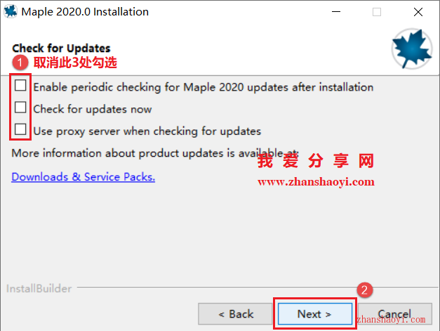 Maple 2020安装教程和破解方法(附补丁)